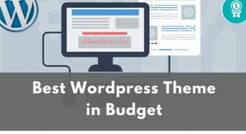 Best Wordpress Theme in Budget
