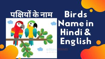 Birds-name-in-hindi-and-english