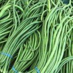 Green long bean